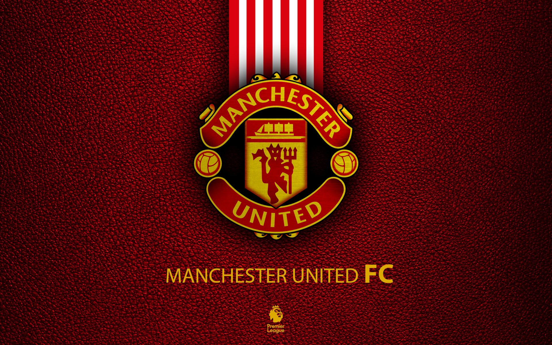manchester united- richest english football club in the  world
